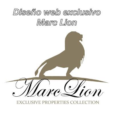 Diseño web exclusivo para inmobiliaria Maerc Lion