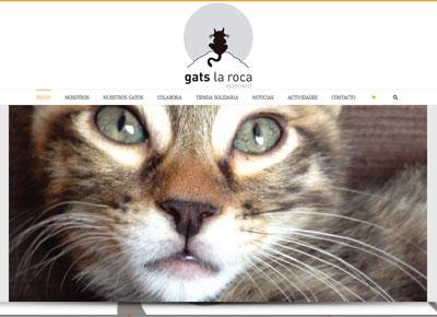 diseño web solidario