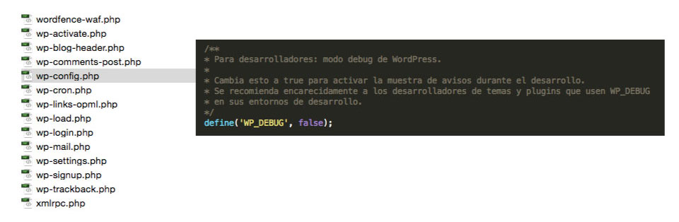 debug mode wordpress